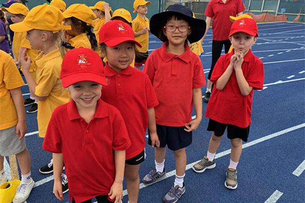 澳大利亚3-10周微留学 | 海外升学第一步!